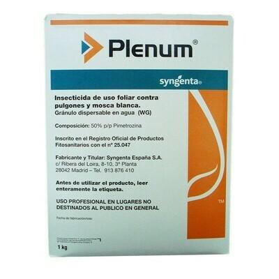 Пленум (6 гр)