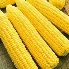 Кукуруза сахарная Мегатон