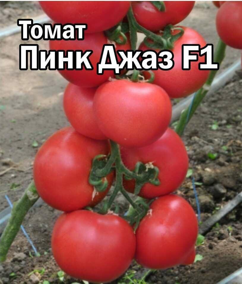 Томат Пинк Джаз F1