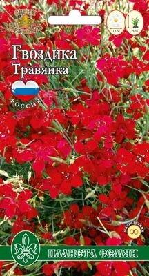 Гвоздика Травянка карминно-красная