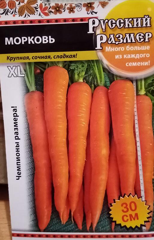 Морковь Русский размер