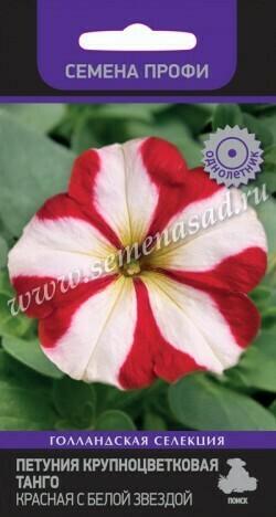 Петуния крупноцветковая Танго Красная с белой звездой