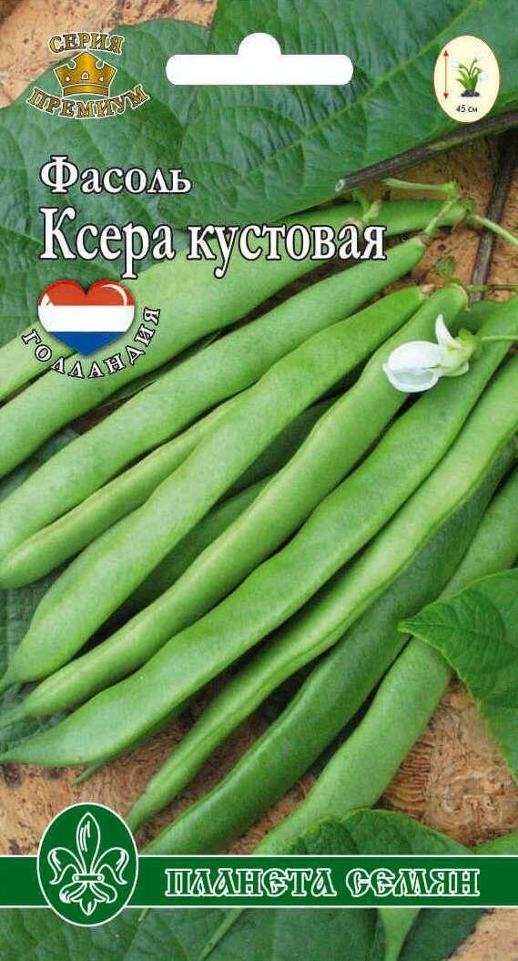 Фасоль Ксера кустовая