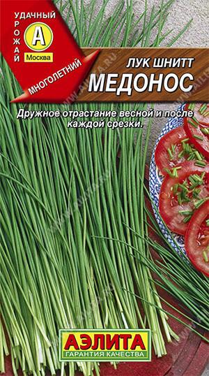 Лук шнитт Медонос