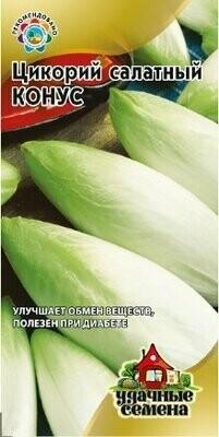 Цикорий салатный Конус