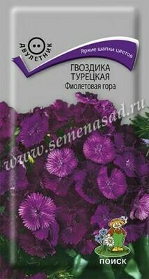 Гвоздика турецкая Фиолетовая гора
