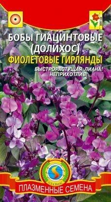 Гиацинтовые бобы (долихос)
