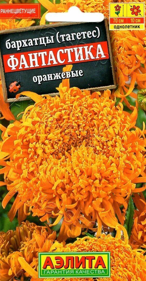 Бархатцы Фантастика оранжевые