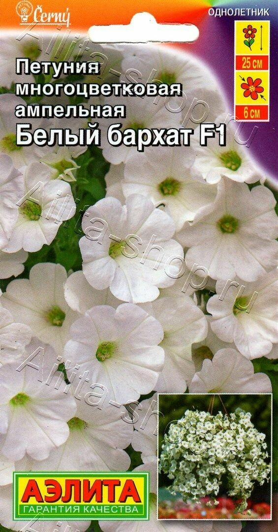 Петуния Белый бархат F1 многоцветковая ампельная