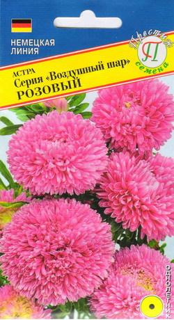 Астра ( серия Воздушный шар) Розовая