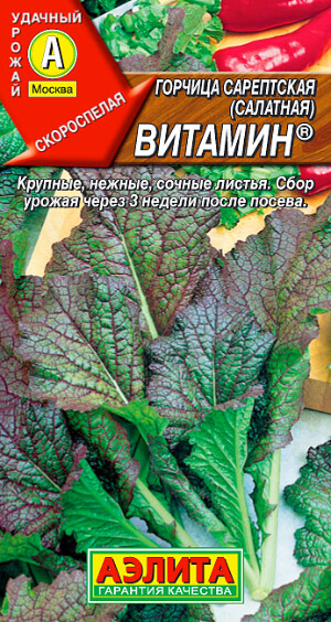 Горчица сарепская (салатная) Витамин