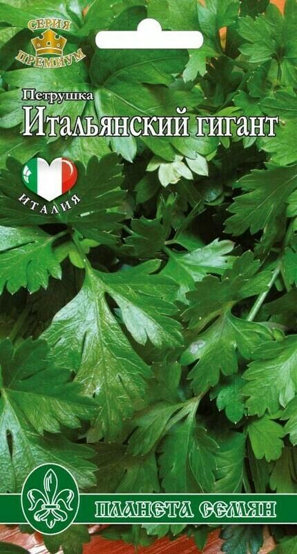 Петрушка листовая Гигант Каталонии