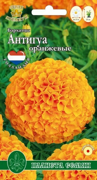 Бархатцы прямостоячие Антигуа оранжевые