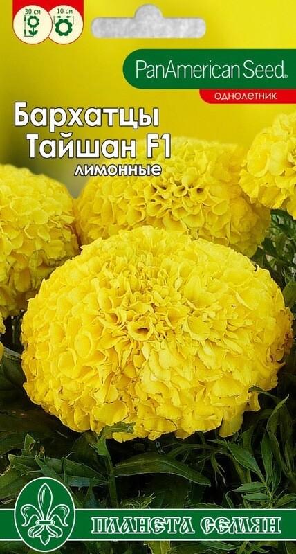 Бархатцы прямостоячие Тайшан лимонный