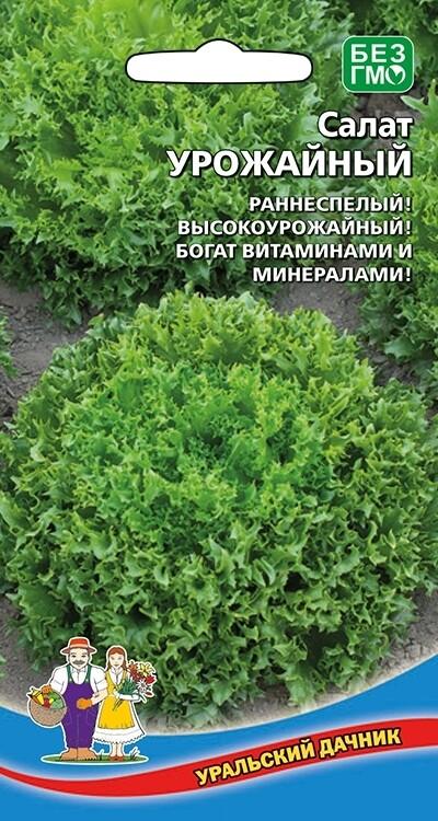 Салат Урожайный