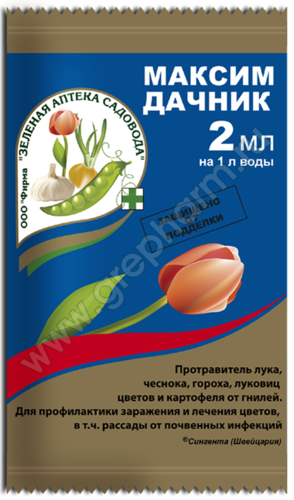 Максим Дачник (2мл)