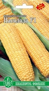Кукуруза сахарная Насолода F1