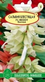 Сальвия Белая ( серия Reddy) F1