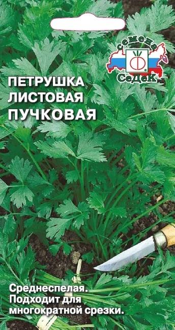 Петрушка листовая Пучковая