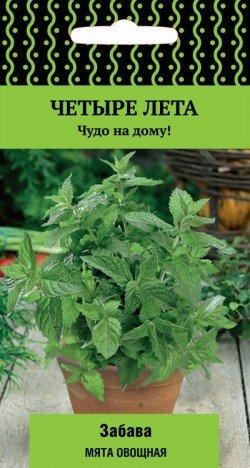 Мята Забава