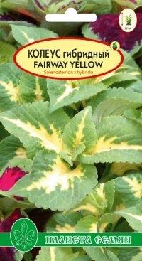 Колеус гибридный Fairwey Yellow F1