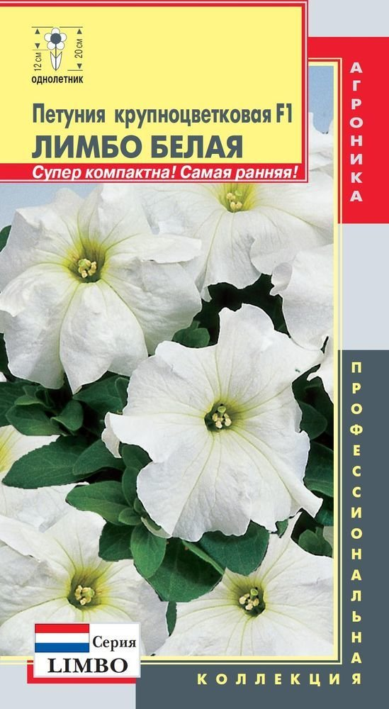 Петуния крупноцветковая F1 Лимбо белая
