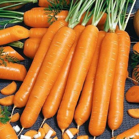 Морковь Медовый спас F1