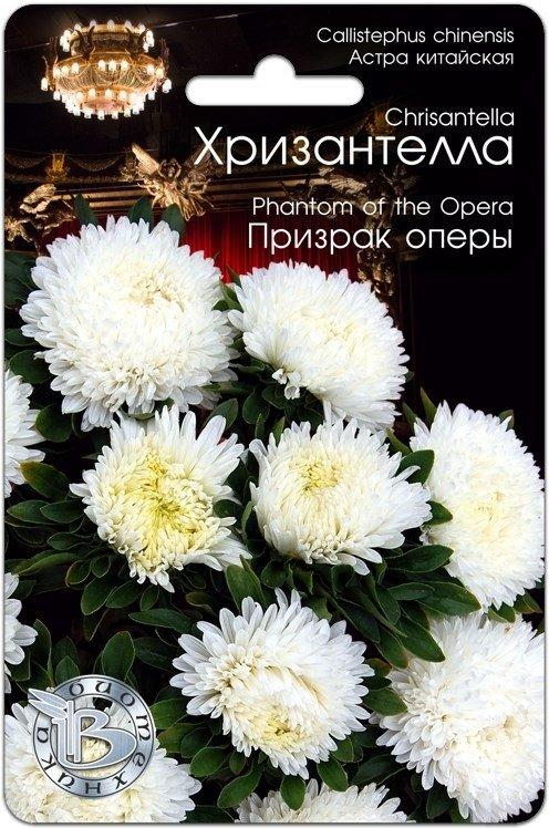 Хризантелла Призрак оперы