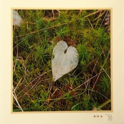 Fotokarte Trauer Herz Quadrat