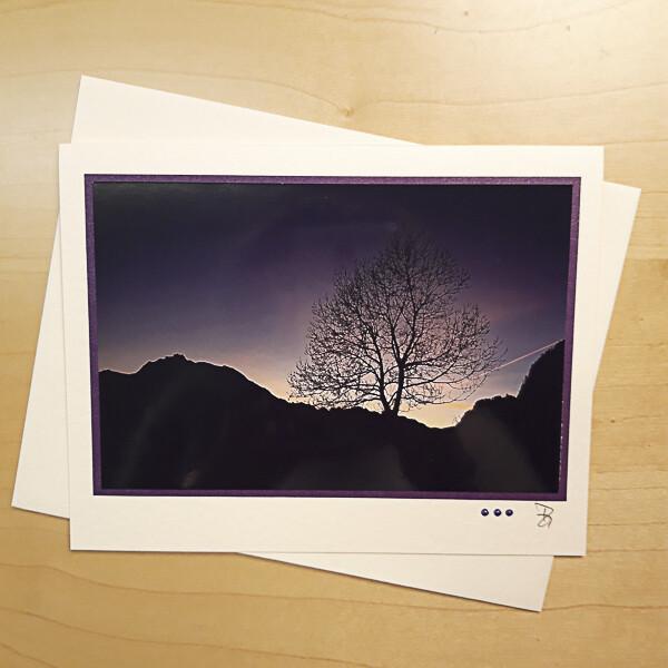 Mit Licht Malen Fotokarte violetter Baum