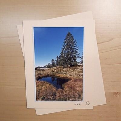Bergwelten Fotokarte Moorlandschaft