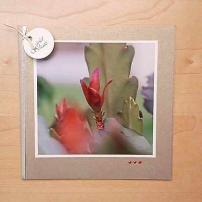 Fotokarte Sommerzeit roter Blattkaktus
