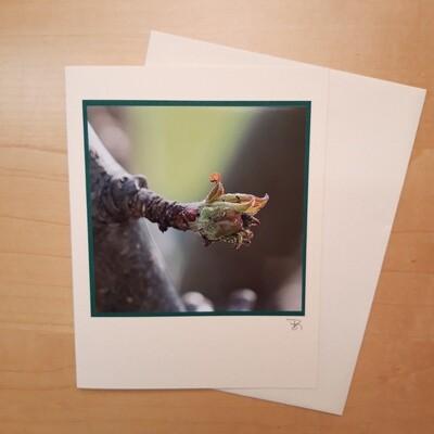 Fotokarte