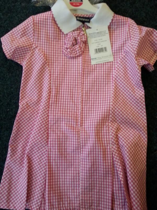 Lyme Community Primary Gingham Dress