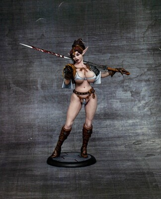 Female Elf Mercenary (PAINTED)