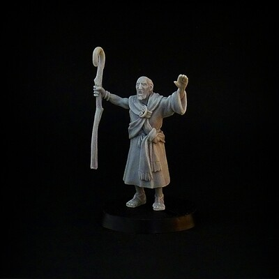Bronze Age Priest