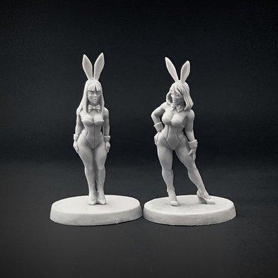 Bunnies 01