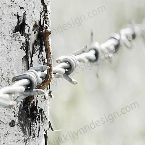 Farmhouse Rural Barbed Wire Square Print