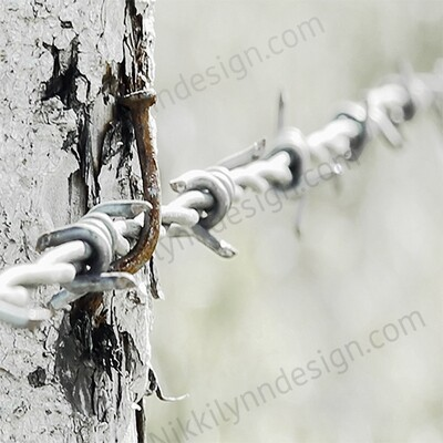 Farmhouse Rural Barbed Wire Square Print Up To 16x16 Digital Download