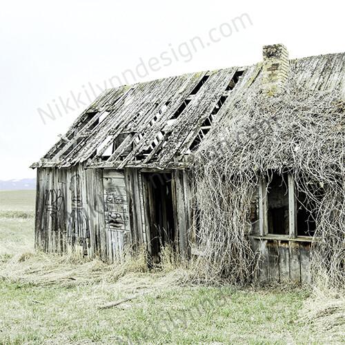 Farmhouse Rural Grass Barn Square Print