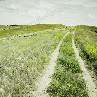 Farmhouse Rural Trail Square Print Up To 16x16 Digital Download