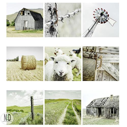 Set Of 9 Farmhouse Rural Square Prints