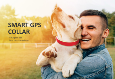 PetWhere Smart GPS Dog Collar
