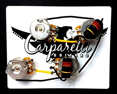 Carparelli 5A Emerson Pre-Wired Les Paul Harness