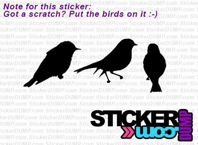 Scratch Birds