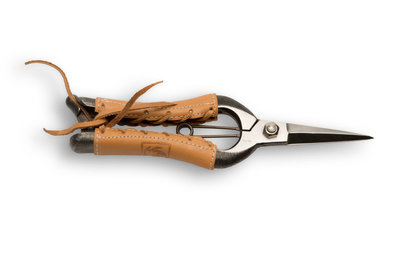 Gyokucho 8-inch Bud Shears