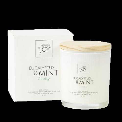 Eucalyptus & Mint Candle 100% Natural