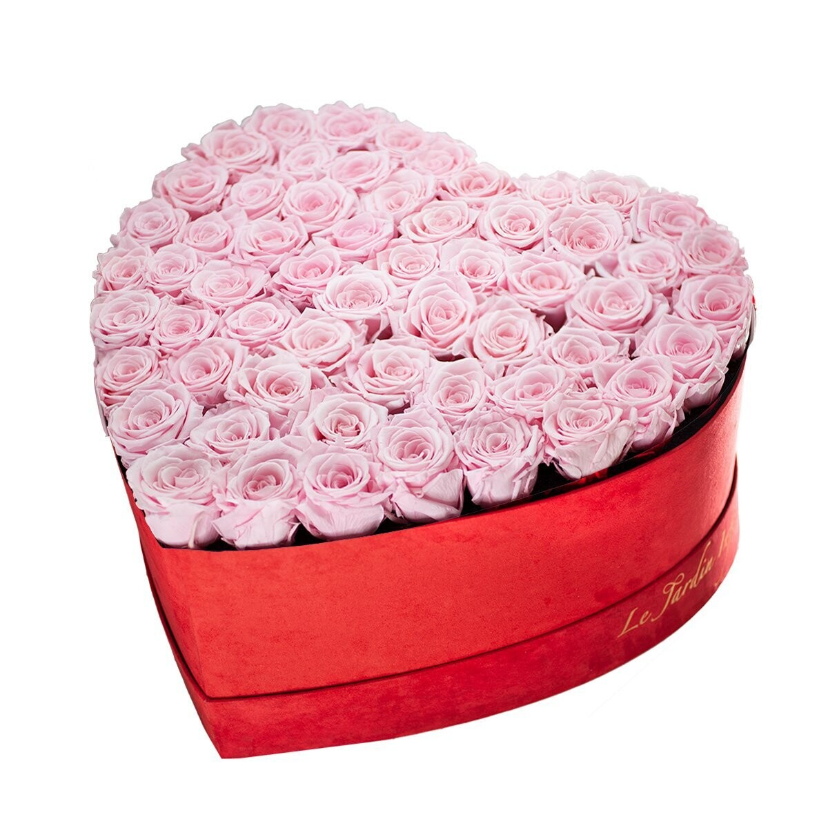 55-65 Soft Pink Preserved Roses in A Heart Shaped Box - Medium Heart