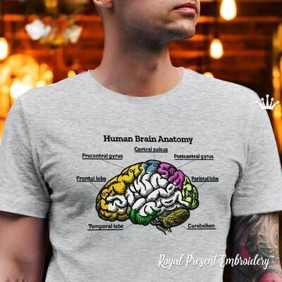 Разноцветный человеческий мозг Дизайн машинной вышивки - 4 размера