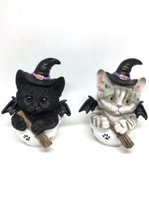 Witch Kitty - Set of 2 Black & White